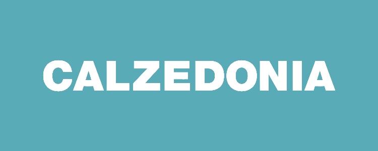 b2427ab4291a Уникальный бренд CALZEDONIA был основан в итальянском городе Верона в 1987  году. Основным принципом создания данного бренда одежды было производство и  ...