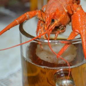 Чем убрать пятна от пива