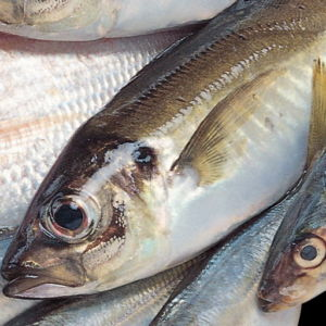 Чем убрать запах рыбы