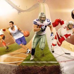 Спортивная одежда оптом: как сделать специализированный магазин популярным